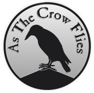 cropped_crow_6