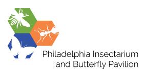 IBP logo_text