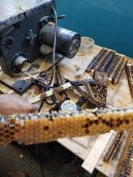 Bee frame scraps