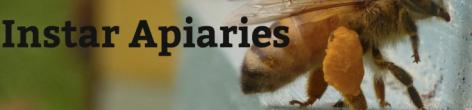 instar apiaries